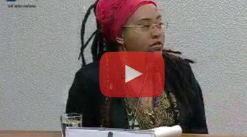 Audiência da CPI do Assassinato de Jovens com representantes do governo e juventude