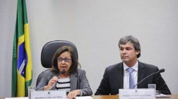 CCJ analisa plano para reduzir assassinato de jovens no país