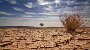 Artigo: Fórum Mundial da Água – Recursos para garantir o direito à água e ao saneamento