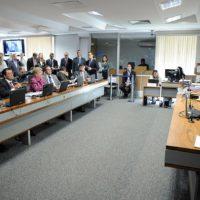 CCJ aprova tomada de decisão apoiada para pessoa com deficiência grave ou mental
