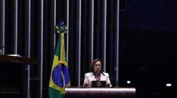 """Lídice diz que Brasil não é parlamentarista para ter """"primeiro ministro"""""""