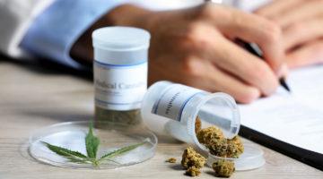 CAS aprova descriminalização da maconha para uso medicinal
