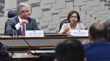 CPMI das Fake News aprova plano de trabalho apresentado por relatora