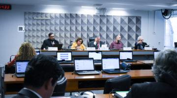 Especialistas afirmam que disseminação de notícias faltas impacta negativamente a democracia